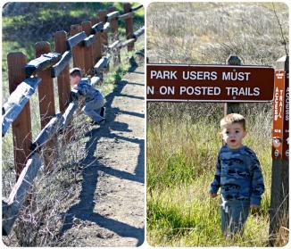 maddox hike